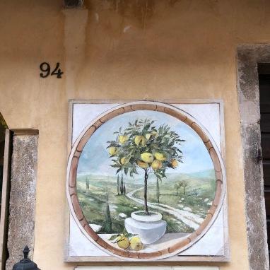 I want a potted lemon tree so badly